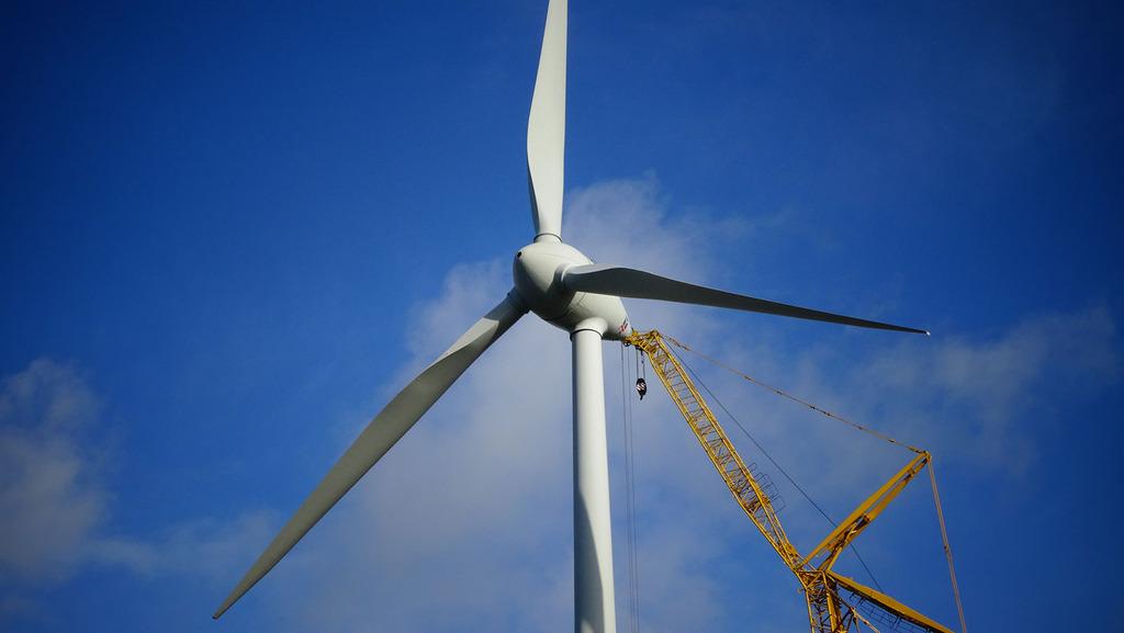 Van Reel BV windturbine Staphorst ecologie